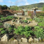 GIY Event at The Organic Centre, Rossinver