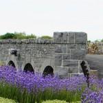 The splendidly restored Nine Arches