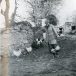 martin-yank-quinn-1950s