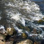 river-clare