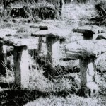 stone-stands