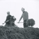 tidying-silage-pit-lakeview