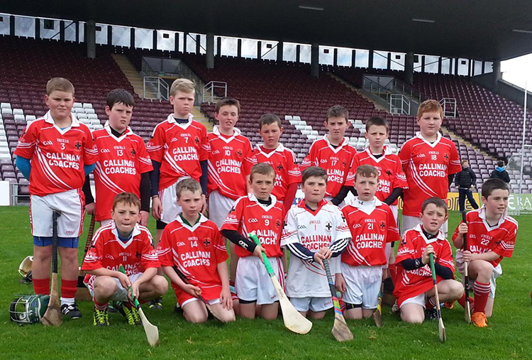 Pictured in Pearse Stadium at the U11s Festival of Hurling on 5th of May 2014, Group A. Back Row: Ryan Fox, Aodhan Byrne, Aaron Healy, Daniel Fox, Ryan O'Connell, Conor Maher, Jamie Lydon, Ryan Gaughan.  Front Row: Ronan Killilea, Gerry Owens, Ronan Hession, Michael Coleman, Riain Concannon, Sean McHugh, Sean Donovan.