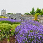 Claregalway Pride of Place Planning Meeting