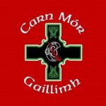 Carnmore Hurling Club January 2015 News