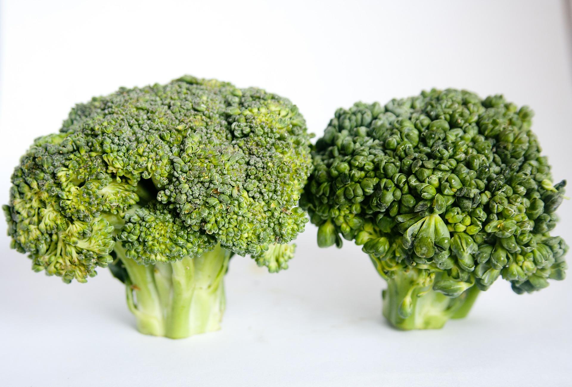broccoli-390002_1920