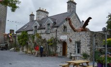 Crowds to Flock to Autumn Garden Fair at Claregalway Castle This Sunday