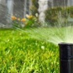 What To Do In Your Garden In Hot Weather- Paraic Horkan