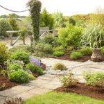 September Gardening with Anne McKeon
