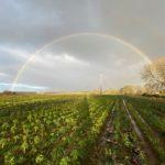Green Earth Organics